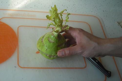 last fall's kohlrabi, found in the bottom of the bin...