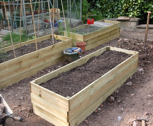 3 raised beds now in!