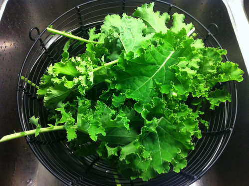 Kale from the garden. Gonna have that for dinner. :-)