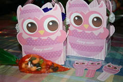 Owl Easter boxes and bookmarks