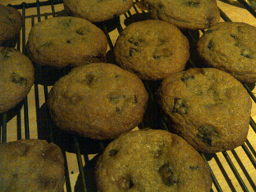 Choc chip fudge cookies