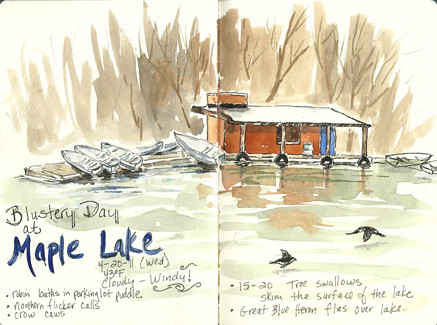 20110420_maple_lake_sketch