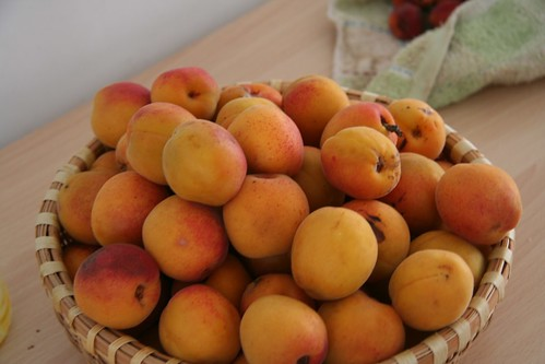 Apricot Smoothie Apricots