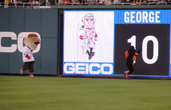 Teddy Roosevelt chases the Orioles Bird, who takes the lead in the presidents race at Nationals Park