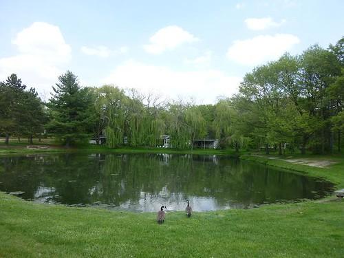 IL - Woodhaven Lakes 003
