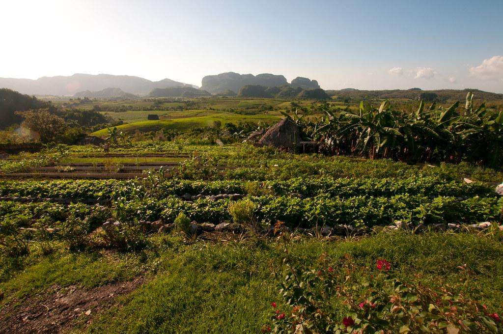 Valle del Silencio, Vinales, Cuba