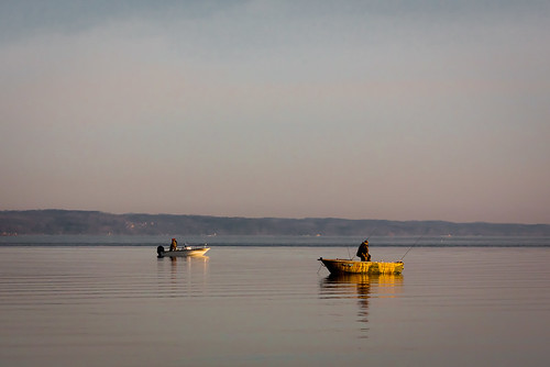 Fishing in Bay