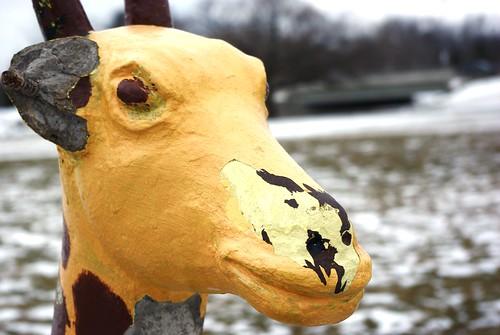 Broken Giraffe