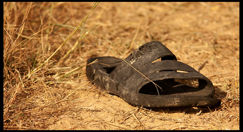 Lonely Slipper by Sushil