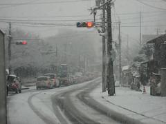 20080209:凄い雪でございました