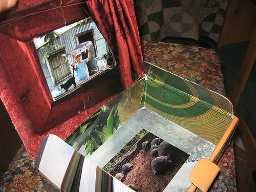 collage-box-2