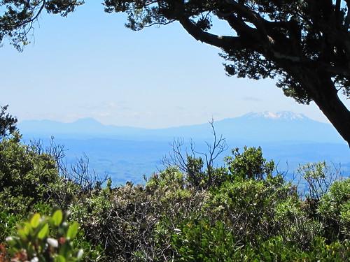 View from the foot of Mt Taranaki