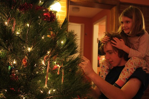last night we trimmed the tree...