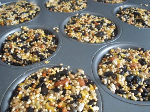 Birdseed Treats in Tins