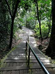 蜿蜒的樓梯