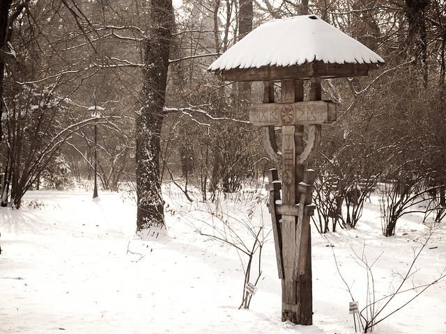 Troiță în iarnă