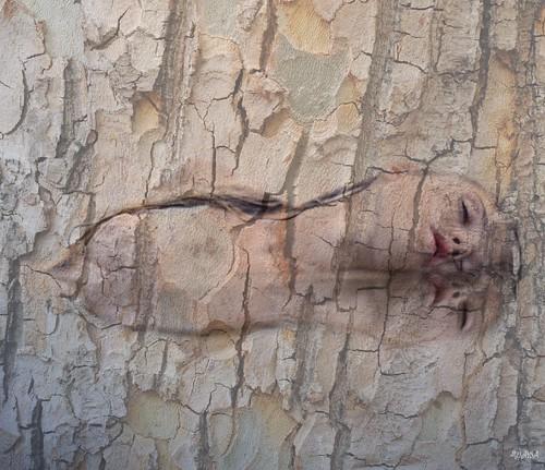 ~Tree Spirits~ por THROUGH_HAWAIIAN_EYES