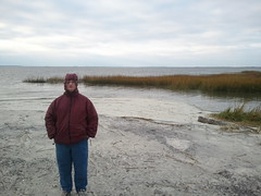 Mom on tower beach