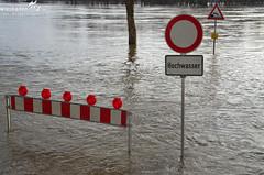 Hochwasser Main und Rhein bei Wiesbaden Januar 2011