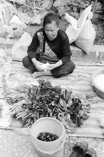 Laos025