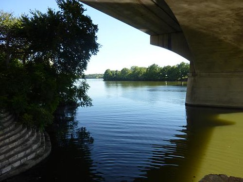 Austin Congress St. Bridge 1