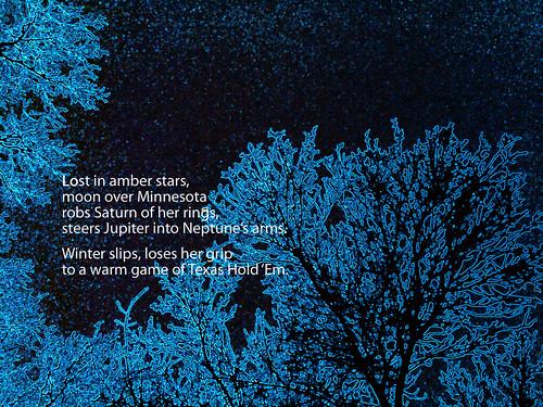 IMG01736-20110211-1717 texas white