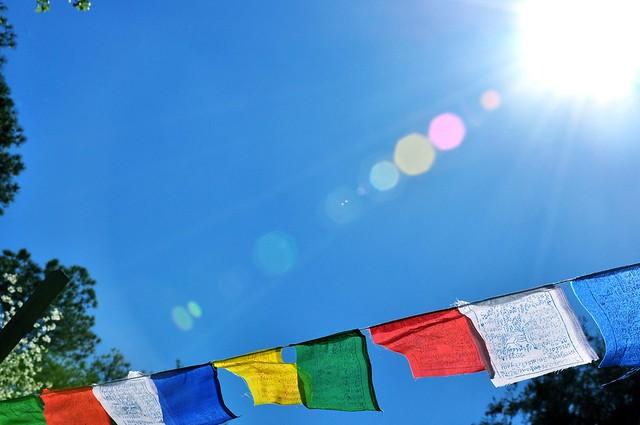 Prayer Flags in Open Lotus Garden
