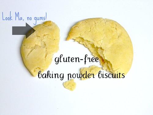 Gluten-Free Baking Powder or Soda Biscuits (GFCF) – Z's ...