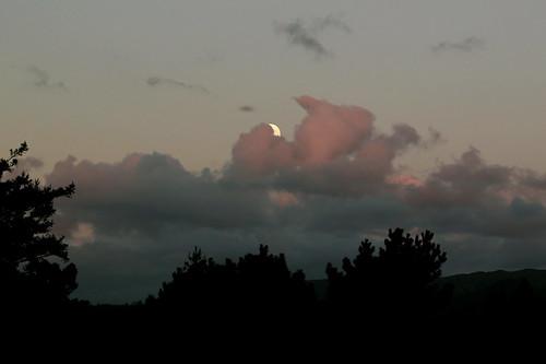 Saturday: Moonrise