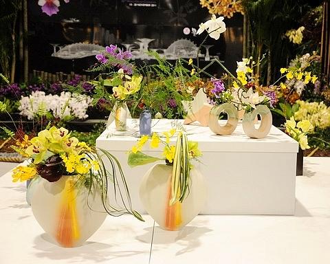 愛花人集合!: 2010臺北國際花卉博覽會爭艷館~2011臺北國際蘭展(二)