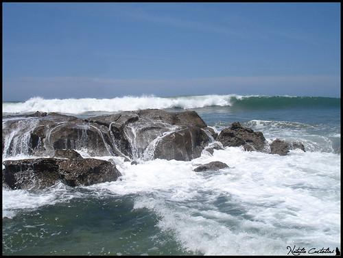 El mar sin Alfonsina