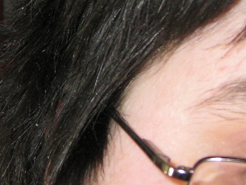 several white hairs on a background of black hair