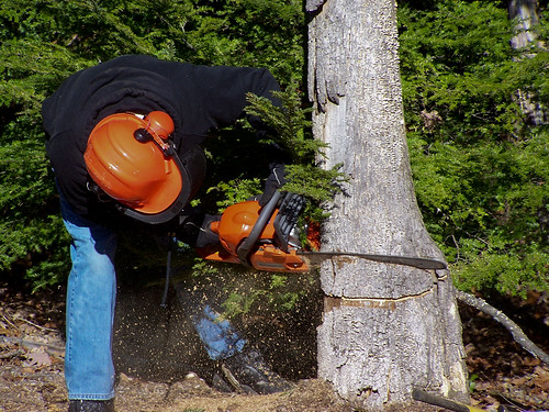 Chainsaw by jronaldlee, on Flickr