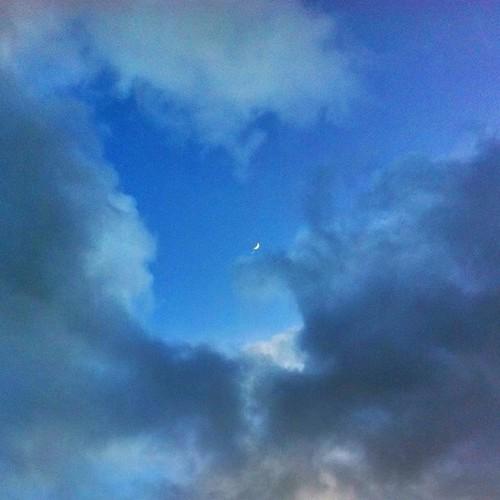 お昼~! 雲間から月が…