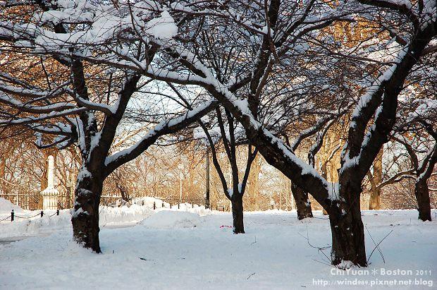 Boston Common波士頓公園15.JPG