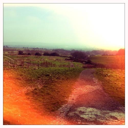 Path to Horrocks Wood