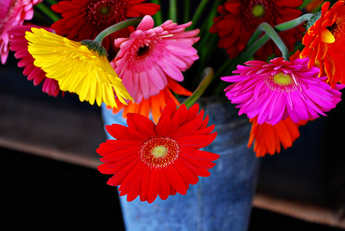 Flower Bucket