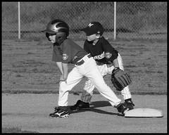 Hanford Youth Baseball 2011, Cal Ripken Baseball
