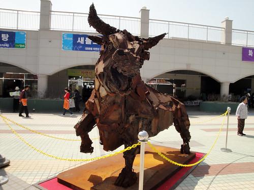 An angry bull