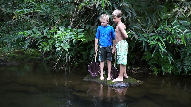 Fishing for Prawns