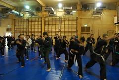 Fudo Ryu Daken Taijutsu in Akban Martial arts ...
