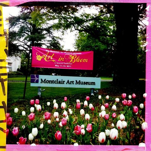 Art In Bloom @ Montclair Art Museum