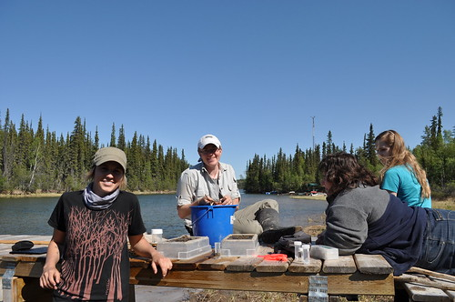Meagan and Crystal sorting aquatic specimens with Penny and Rowena, our hosts