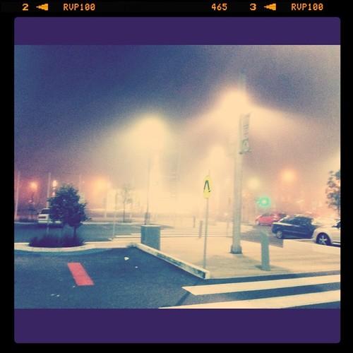 Fog by bradaus