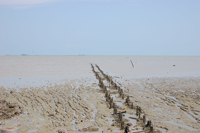 The trip: Old jetty