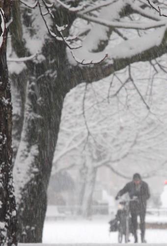snowy, ghost-like cyclist