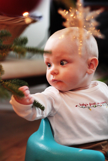 finn_tree