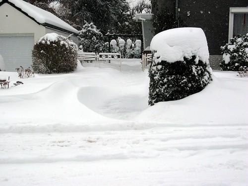 Weihnachten 2010 002