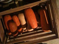 Stored squash