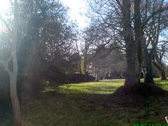 The Return of the Sun - Early Feb 2011